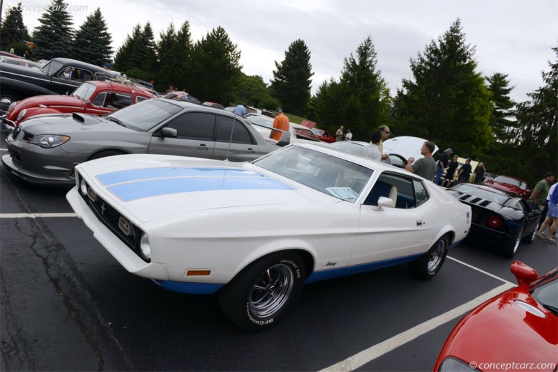 1972 Ford Mustang Vehicle Information