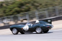 1954 Jaguar Type D