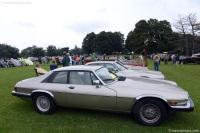 1991 Jaguar XJS image.