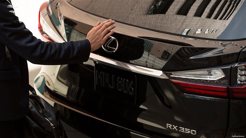 2017 Lexus RX