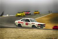 4A: FIA, IMSA, GT, GTX, AAGT 1973-81