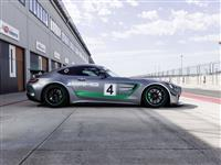 Image of the AMG GT4