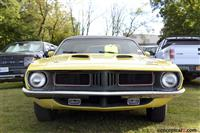 1974 Plymouth Barracuda image.