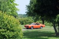 1969 Pontiac GTO image.