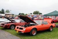 1976 Pontiac Firebird image.