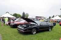1985 Pontiac Firebird image.