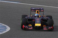 2014 Red Bull Formula 1 Season