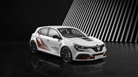 Popular 2019 Renault Mégane R.S. Trophy-R Wallpaper