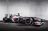 2013 Sauber Formula 1 Season
