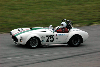 Chassis information for Shelby Cobra 427