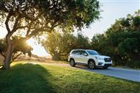 Subaru Ascent Monthly Vehicle Sales