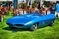 Concept Cars and Custom Coachwork
