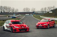 Image of the Golf GTI TCR