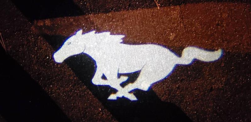 Driving Impressions : 2019 Bullitt Mustang