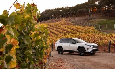 All-New 2019 Toyota RAV4 Breaks The Mold For The Segment It Created