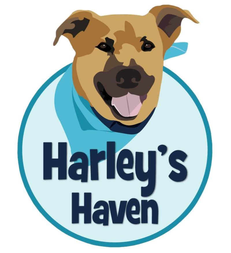 Carlisle Auctions Teams with Harley's Haven Dog Rescue at the Fall Carlisle Auction