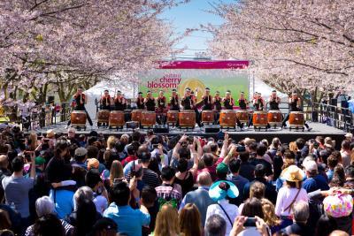 Subaru Of America Returns As The Title Sponsor Of The 2018 Cherry Blossom Festival In Philadelphia