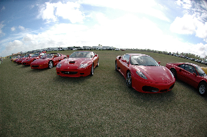 Palm Beach International Concours d^Elegance