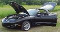 1999 Pontiac Firebird Formula image.